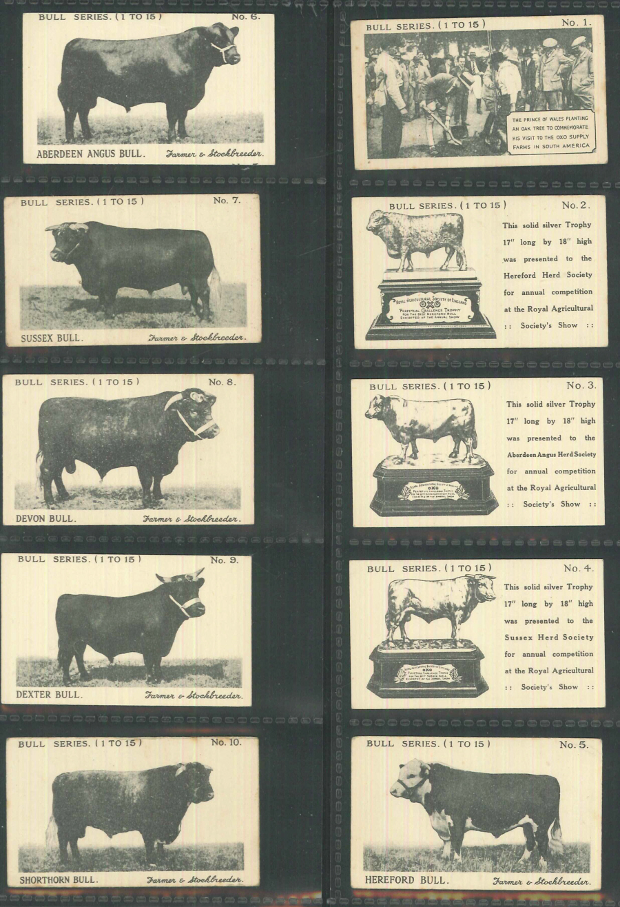 Oxo Bull Series of 15